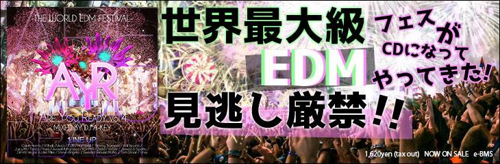 ARE YOU READY VOL.4 - THE WORLD EDM FESTIVAL - DJ A-KEY
