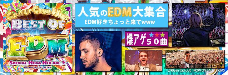 BEST OF EDM SPECIAL MEGA MIX VOL.2 - DJ JUNK
